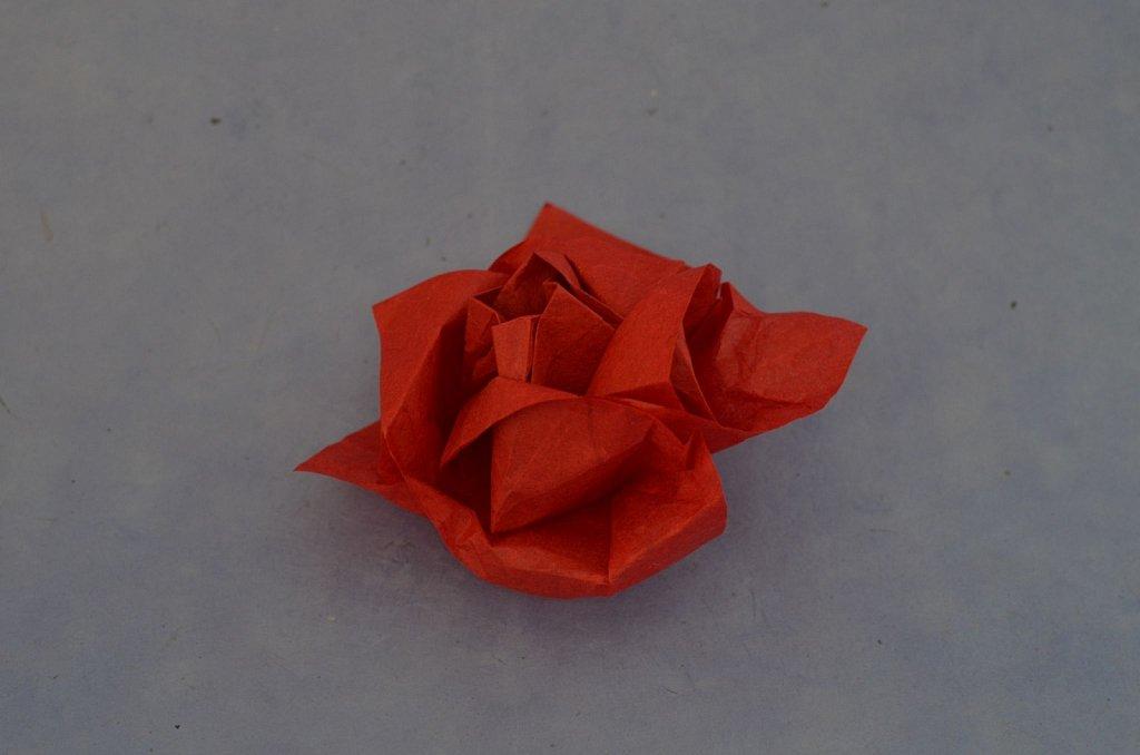 Makoto Rose 2
