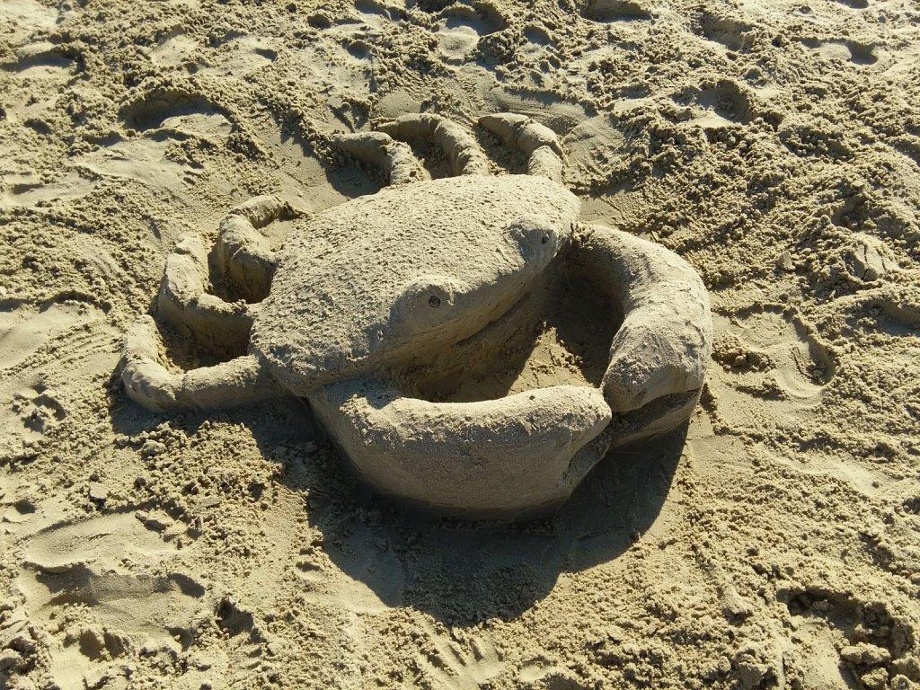 Friendly Crab 2