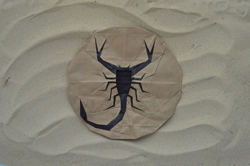 Flat Scorpion